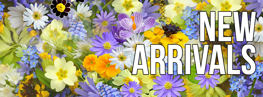summer new arrivals flowers facebook